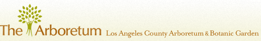 Los Angeles County Arboretum and Botanic Garden, Arboretum Library